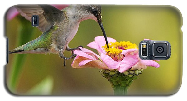 Galaxy S5 Case featuring the photograph In The Pink by Olivia Hardwicke