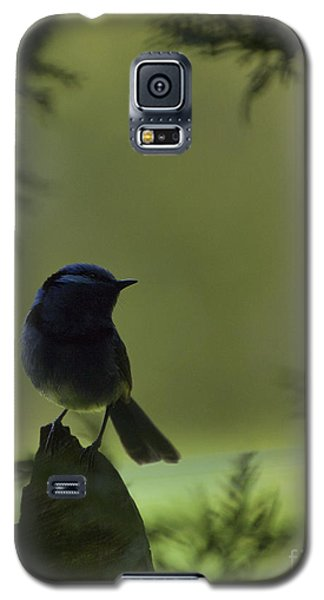 Galaxy S5 Case featuring the photograph In The Shadows by Serene Maisey
