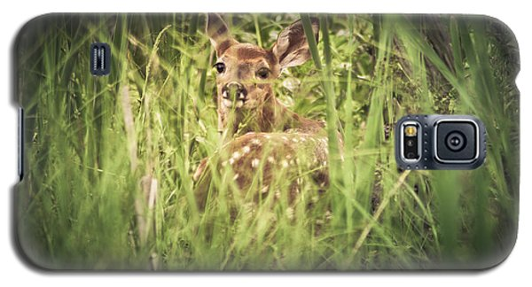 In The Tall Grass Galaxy S5 Case by Shane Holsclaw