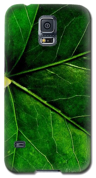In The Viens Galaxy S5 Case by Sally Simon