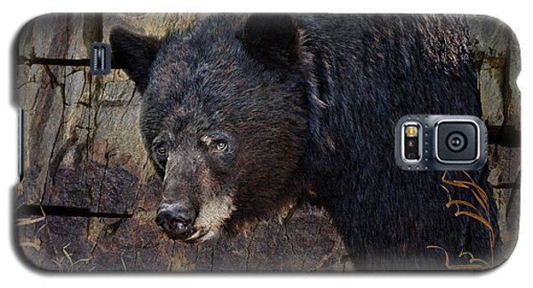 Inconspicuous Bear Galaxy S5 Case by Ed Hall