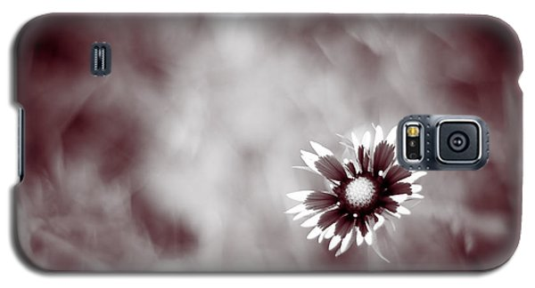 Indian Blanket Flower Galaxy S5 Case