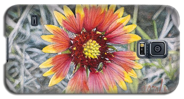 Galaxy S5 Case featuring the painting Indian Blanket by Joshua Martin