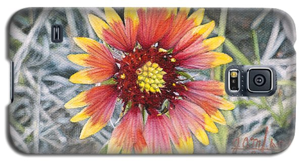 Indian Blanket Galaxy S5 Case by Joshua Martin