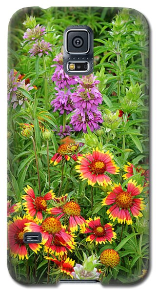 Indian Blankets And Lemon Horsemint Galaxy S5 Case