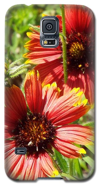 Indian Blankets Galaxy S5 Case