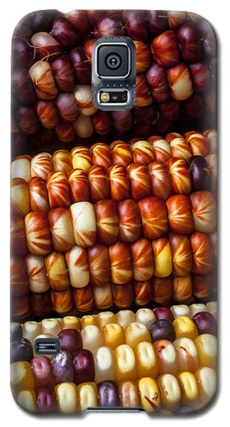 Indian Corn Harvest Time Galaxy S5 Case by Garry Gay