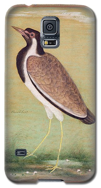 Indian Lapwing Galaxy S5 Case