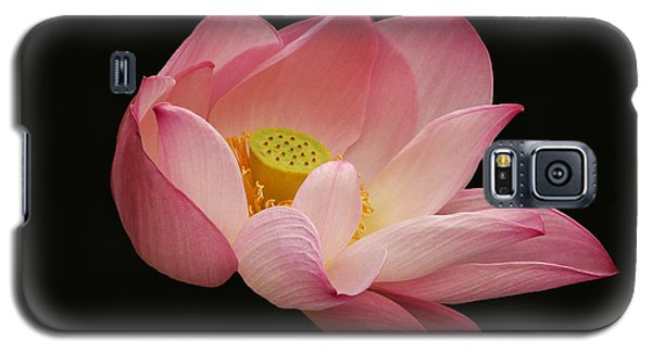 Indian Lotus On Black --- Sacred Light Galaxy S5 Case by Byron Varvarigos