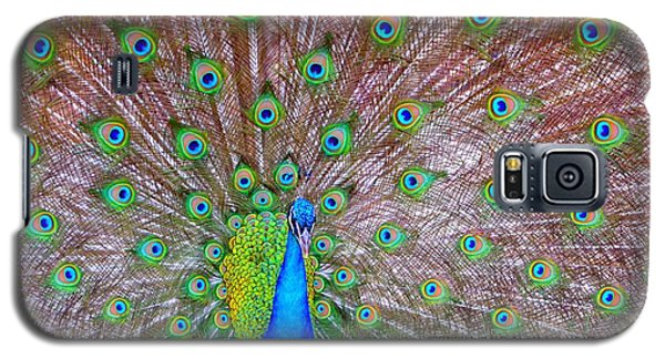 Galaxy S5 Case featuring the photograph Indian Peacock by Deena Stoddard