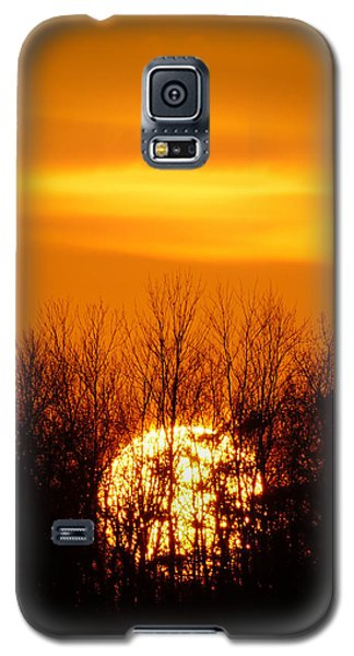 Inferno In The Trees Galaxy S5 Case