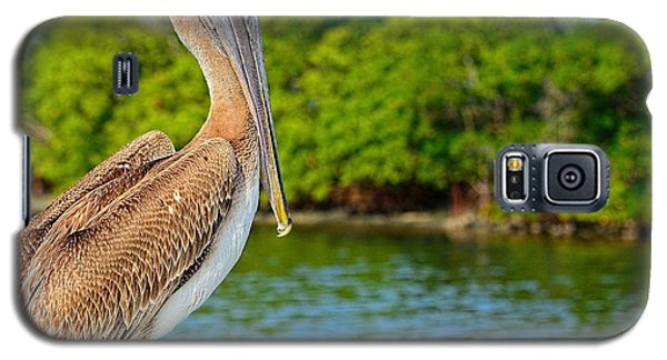 Galaxy S5 Case featuring the photograph Injured Pelican by Pamela Blizzard