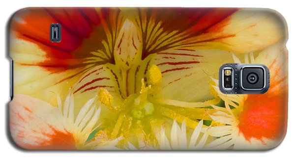 Galaxy S5 Case featuring the photograph Ink Blot by Heidi Smith