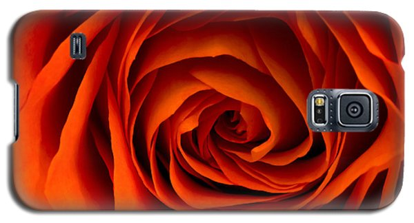 Inner Beauty Galaxy S5 Case by Don Schwartz