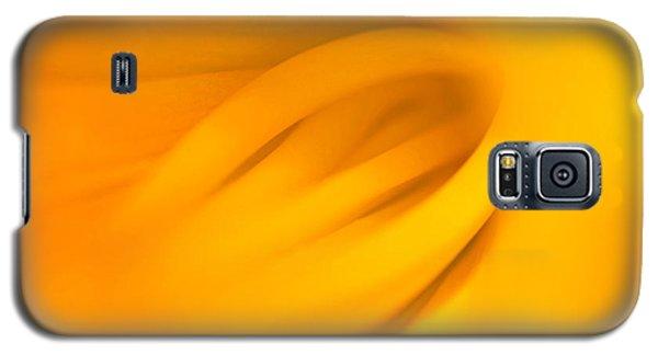Inner Beauty Galaxy S5 Case by Joan Herwig