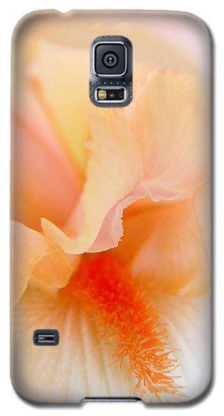 Inner Iris 1 Of 4 Galaxy S5 Case