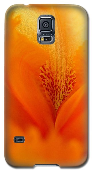 Galaxy S5 Case featuring the photograph Inner Iris 3 Of 4 by Jana Russon