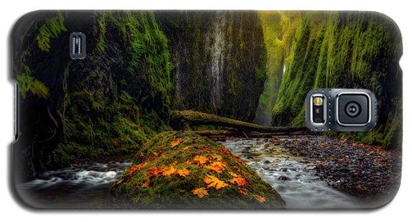 Inner Sanctum  Galaxy S5 Case