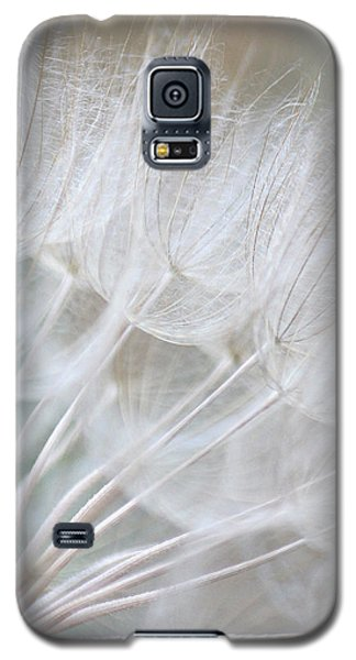 Innocence Galaxy S5 Case by The Art Of Marilyn Ridoutt-Greene