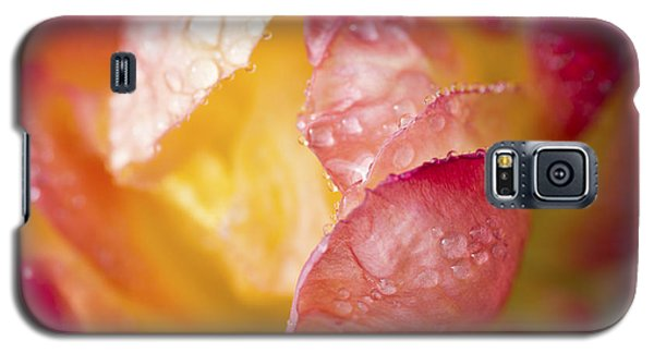 Galaxy S5 Case featuring the photograph Inside A Rose by Priya Ghose