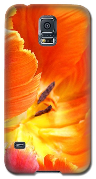 Galaxy S5 Case featuring the photograph Inside Her Journey by The Art Of Marilyn Ridoutt-Greene