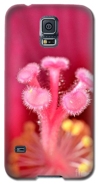 Galaxy S5 Case featuring the photograph Inside The Hibiscus by Lila Fisher-Wenzel