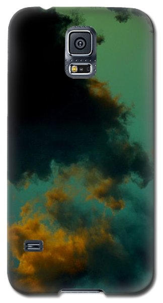 Insomnia Galaxy S5 Case by Steve Godleski