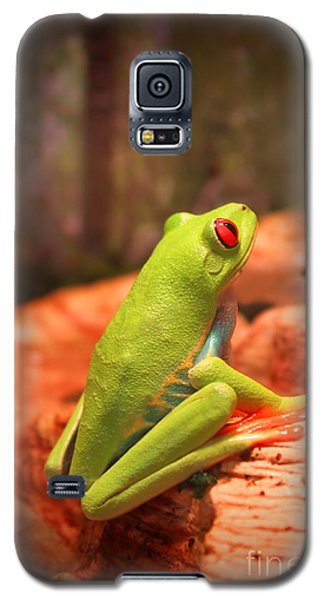 Galaxy S5 Case featuring the photograph Inspirations For Tomorrow by Cathy  Beharriell