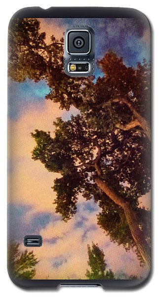 Inspired By Maxfield Parrish Galaxy S5 Case