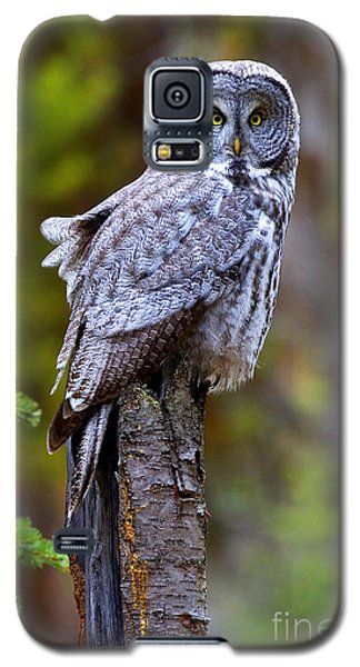 Intent Galaxy S5 Case by Aaron Whittemore