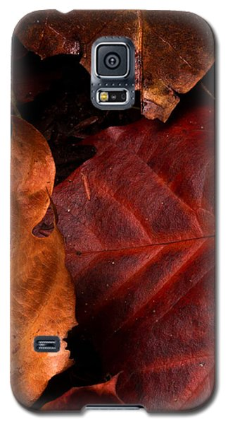 Intersection Galaxy S5 Case by Haren Images- Kriss Haren