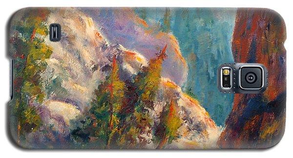 Into The Canyon Galaxy S5 Case