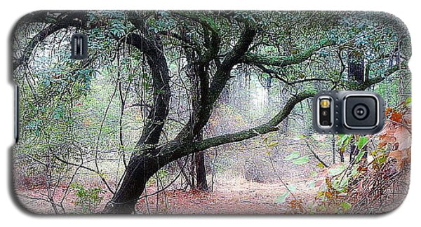 Galaxy S5 Case featuring the photograph Into The Mist by Jim Whalen