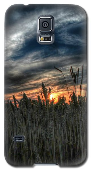 Into The Night Galaxy S5 Case