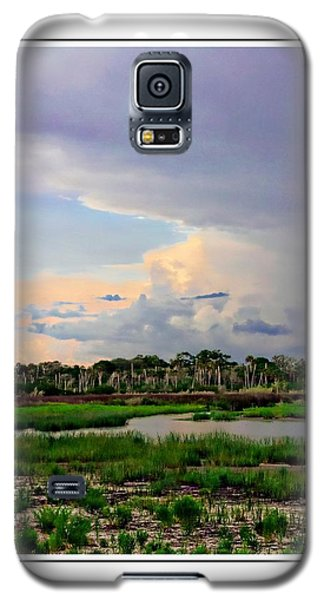 Intracoastal Colours Galaxy S5 Case by Alice Gipson