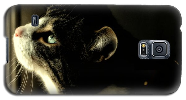 Intrigued Galaxy S5 Case by Shari Nees