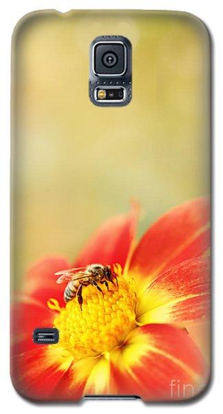 Inviting Galaxy S5 Case