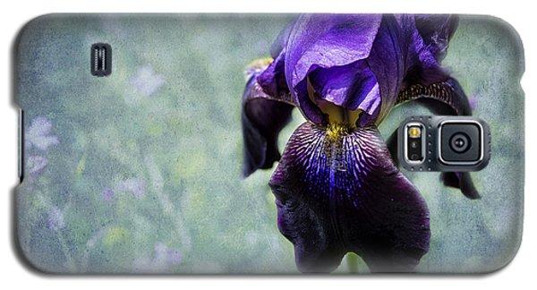 Iris - Purple And Blue - Flowers Galaxy S5 Case by Belinda Greb