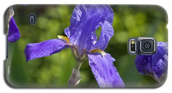 Iris 4 Galaxy S5 Case