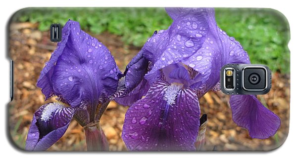 Iris After Rain Galaxy S5 Case by Katie Wing Vigil