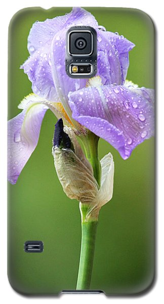 Galaxy S5 Case featuring the photograph Iris After The Rain by Trina  Ansel