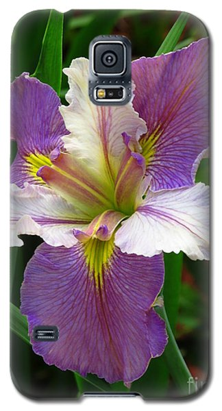 Galaxy S5 Case featuring the photograph Iris Beauty by Phyllis Beiser