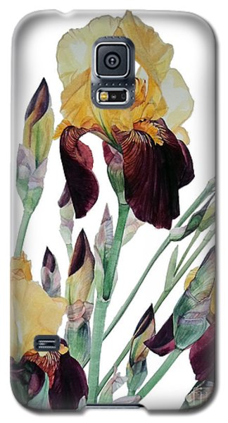 Watercolor Of Tall Bearded Iris In Yellow And Maroon I Call Iris Beethoven Galaxy S5 Case