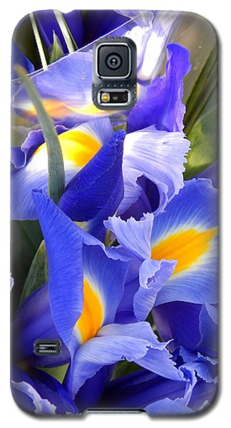Iris Blues In New Orleans Louisiana Galaxy S5 Case