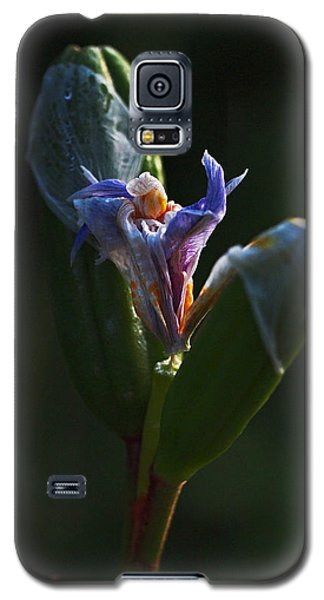 Iris Emerging  Galaxy S5 Case