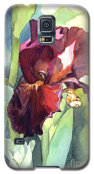 Watercolor Of A Tall Bearded Iris Called Sultan's Palace In Red And Burgundy Galaxy S5 Case