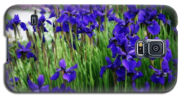 Galaxy S5 Case featuring the photograph Iris In The Field by Kay Novy
