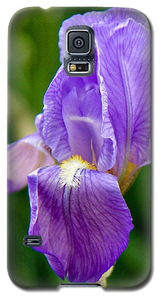 Iris Galaxy S5 Case by Lana Trussell