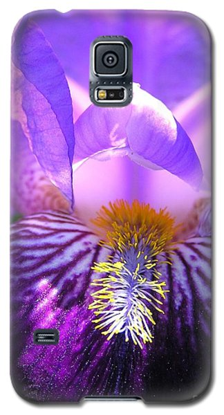 Iris Light Galaxy S5 Case by Susan  Dimitrakopoulos