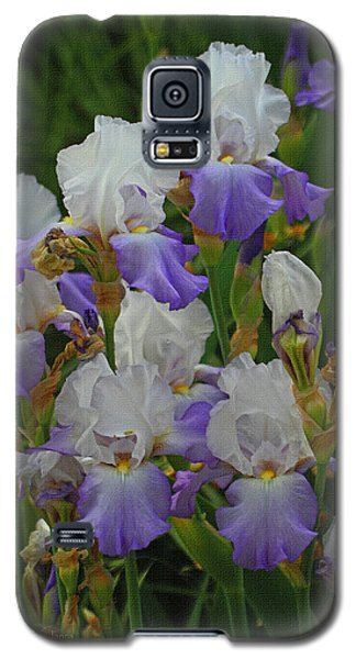 Iris Patch At The Arboretum Galaxy S5 Case by Tom Janca